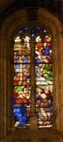 Salamanca för ängeladelsmanmålat glass ny domkyrka Spanien Royaltyfria Foton