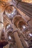 Salamanca för kupol för stenkolonnstatyer ny domkyrka Spanien Arkivfoton