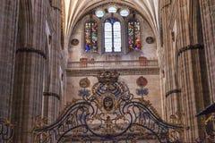 Salamanca för målat glass för stenkolonnvapen ny domkyrka Spanien Royaltyfri Fotografi