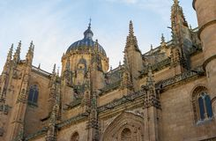 Salamanca katedra obrazy royalty free