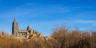 Salamanca katedra Panoramiczna zdjęcie royalty free