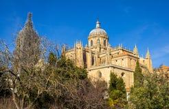Salamanca katedra Za drzewami zdjęcie stock