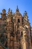 Salamanca katedry wierza zdjęcie royalty free