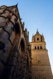 Salamanca-Kathedrale Lizenzfreies Stockfoto