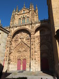 Salamanca-Kathedrale Soutern-Türen Lizenzfreie Stockfotos