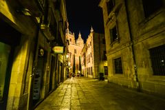 Salamanca - la Spagna Fotografie Stock
