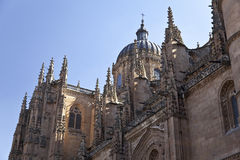 Salamanca New Cathedral (Catedral Nueva) Stock Images