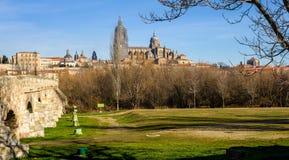 Salamanca Od parka zdjęcie royalty free