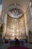 Salamanca - Oude Kathedraal Stock Afbeeldingen