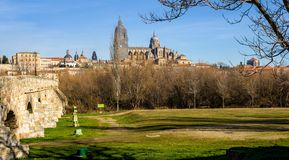 Salamanca From the Park Royalty Free Stock Photo