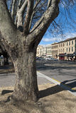 Salamanca Place in Hobart, Tasmania Stock Photo
