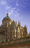 Salamanca's Cathedral (Spain). Awesome view of Salamanca's Cathedral, one of the most beautiful cathedrals of the spanish Romanesque and Gothic styles Royalty Free Stock Photography