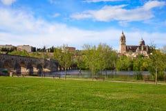 Salamanca skyline and roman bridge on Tormes Stock Photo