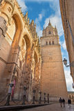 Salamanca - The south gothic portal of Catedral Nueva - New Cathedral in evening light. Royalty Free Stock Image