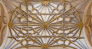SALAMANCA, SPAIN, 2016: The gothic vault of side nave in New Cathedral (Catedral Nueva). SALAMANCA, SPAIN, APRIL - 16, 2016: The gothic vault of side nave in Royalty Free Stock Image