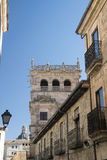 Salamanca Spain: historic Monterrey Palace Stock Photos