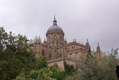 Salamanca stad av studenterna Arkivfoto