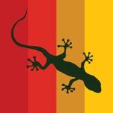 Salamander on a color background Stock Image