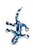 Salamander en el fondo blanco Fotos de archivo libres de regalías