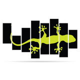 Salamander lizard color vector Royalty Free Stock Images