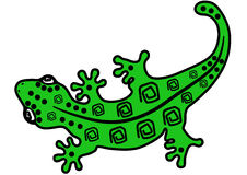 Salamander with pattern on the back Royalty Free Stock Image