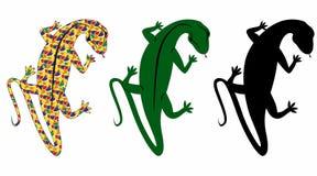 salamander Royalty Free Stock Photography