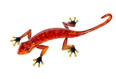 Red salamander, isolated on white. Enameled metal figure of fire-colored salamander, isolated on white background Royalty Free Stock Image
