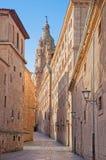 Salamanque - la rue et la La portaile baroque Clerecia de Calle Compania - université pontificale Photos libres de droits