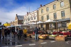 Salamanque lance la Tasmanie sur le marché Photographie stock libre de droits