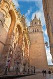 Salamanque - le portail gothique du sud de Catedral Nueva - nouvelle cathédrale dans la lumière de soirée Image libre de droits