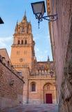 Salamanque - le portail gothique du sud de Catedral Nueva - nouvelle cathédrale dans la lumière de soirée Photographie stock