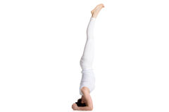 Salamba-sirsasana I Yogahaltung Lizenzfreie Stockfotografie
