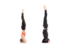 Salamba sirsasana yoga pose in pair Stock Photo