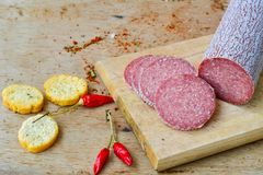Salami and bread. Bread slices and Bruschetta with different kinds of Salami , peperoncino, fresh onion and spices as a rustic lunch royalty free stock photography