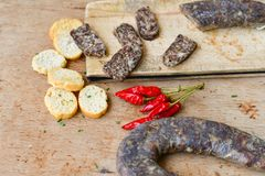 Salami and bread. Bread slices and Bruschetta with different kinds of Salami , peperoncino, fresh onion and spices as a rustic lunch stock image