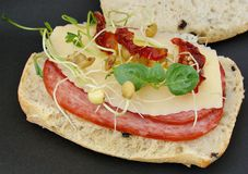 Salami and cheese sandwich. On ciabatta bread with  basil and sundried tomatoes Stock Images