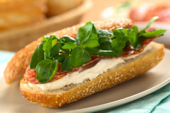 Salami, Cream Cheese, Watercress Sandwich Royalty Free Stock Photography