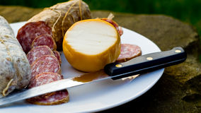 Salami et fromage italiens Photo stock