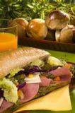 Salami, fromage dans un sandwich à régime Image stock
