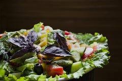 Salami, jamón y ensalada cortada y verduras del queso Exprimir la salchicha y la carne curada en una tabla festiva fotografía de archivo libre de regalías