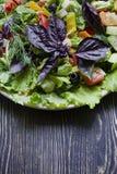 Salami, jam?n y ensalada cortada y verduras del queso Exprimir la salchicha y la carne curada en una tabla festiva imagen de archivo libre de regalías