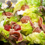 Salami and lettuce salad Stock Image