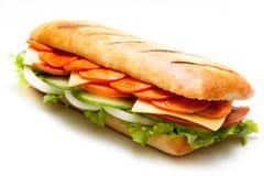 Salami pannini Sandwich Lizenzfreies Stockfoto