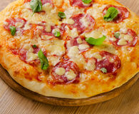 Salami pizza with cheese and basil on    board. Stock Photos