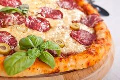 Salami pizza close-up. Salami pizza with basil close-up royalty free stock photo