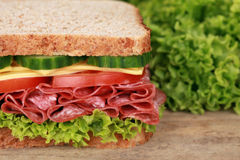 Salami sandwich with copyspace Royalty Free Stock Photo