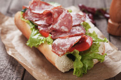 Salami sandwich Stock Photography