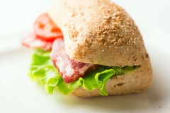 Salami sandwich with tomato and arugula horizontal Stock Photography