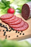 Salami sausage. Fresh and delicious salami sausage stock image