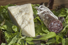 Salami und pecorino Lizenzfreies Stockbild